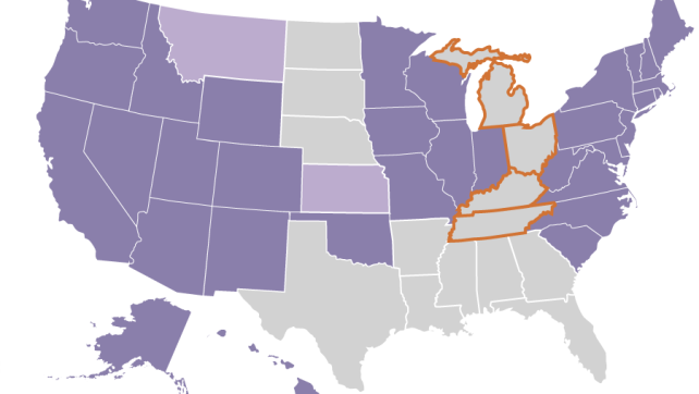 Do states have a right to ban gay marriage?