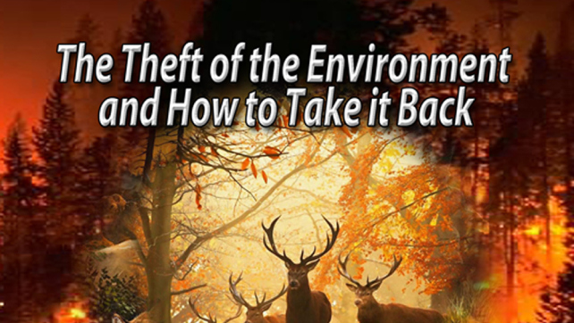 The Theft of Our Environment